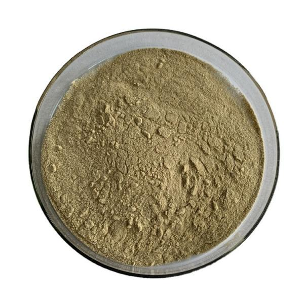 100% Natural Agricultural Fertilizer of Seaweed Extract Liquid #1 image